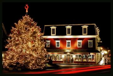 Dock Square Christmas Tree