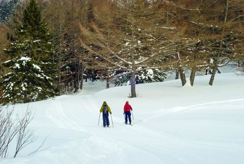 Hit the cross country ski trail this winter!