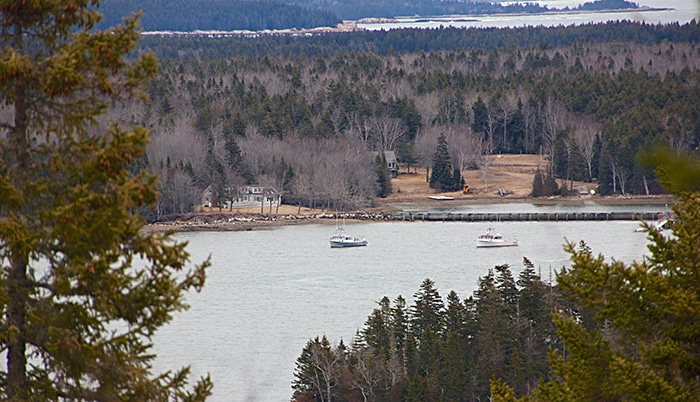 5 Can't Miss Hikes Downeast by Johanna S. Billings