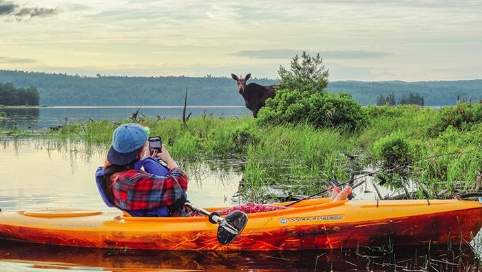 Rangeley Lakes