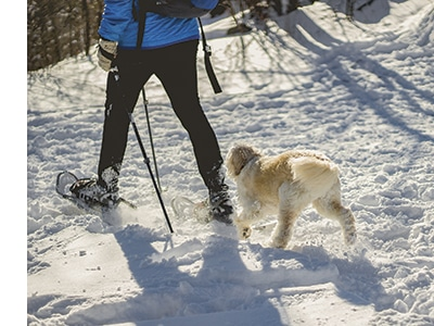 Snowshoeing can enhance cardiovascular health, strengthen leg muscles, burn calories (420-1000 per hour, depending on pace and conditions) and provide a low-impact fitness activity that's safer for the joints.